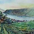 Rhine Valley by Dieter Wystemp
