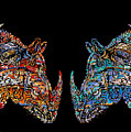 Rhino Love Organica by Carol Cavalaris