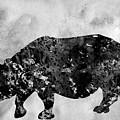 Rhinoceros-black by Erzebet S