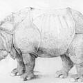 Rhinoceros by Durer Albrecht