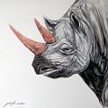 Rhinoceros by Jack No War
