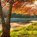 Rhode Island Fall Foliage Over Misty Pond by Jeff Folger