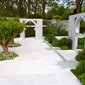 Rhs Chelsea Beauty Of Islam Garden by Chris Day