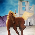 Rhyolite Pony by Patrick Trotter