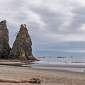 Rialto Beach by Sharon Seaward