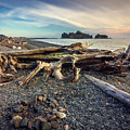 Rialto Beach Washington by Joan McCool