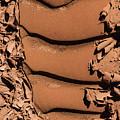 Ribbed Curlies by Deborah Hughes
