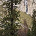 Ribbon Fall Yosemite California by Adam Rainoff