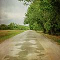 Ribbon Road - Sidewalk Highway by Susan McMenamin