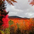 Rich Fall New Hampshire Colors by Elizabeth Dow