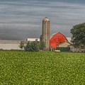 0095 - Richardson Road Farm by Sheryl Sutter