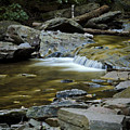 Ricketts Glen 2 by Christina Durity