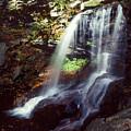 Ricketts Glen Falls 029 by Scott McAllister