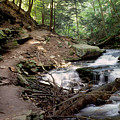 Ricketts Glen Falls 030 by Scott McAllister