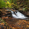 Ricketts Glen State Park Pennsylvania Autumn Waterfall Scenic by Mark VanDyke