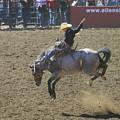 Ride Em Cowboy by Jeff Swan