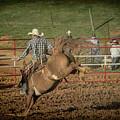 Ride Em Cowboy by Jim Cook