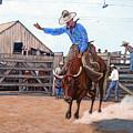 Ride 'em Cowboy by Tom Roderick