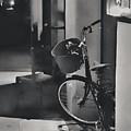 Ride Home by Diana Rajala