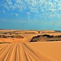 Ride The Dunes  by Randy J Heath