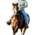 Rider by Don Durfee