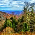 Ridge Junction by Roberta Bragan