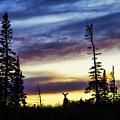 Ridge Sihouette by Chad Dutson