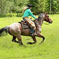 Riding Fast  by Steve McKinzie
