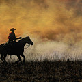 Riding The Fire Line by Lynn Sprowl