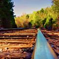 Riding The Rail by Ricky Barnard