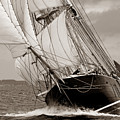 Riding The Wind -sepia by Robert Lacy