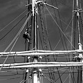 Rigging Aloft by John Meader