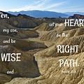 Right Path by Barbara Stellwagen