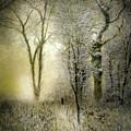 Rimy Forest Windy Daybreak By Laszlo Mednyanszky 1896 by Laszlo Mednyanszky