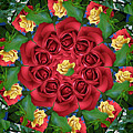 Ring Around The Roses by Renee Trenholm
