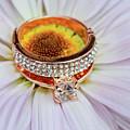 rings on white daisy love Valentine's Day  gerbera and wedding gold  by Valentyn Semenov