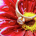 rings pink dahlias love Valentine's Day Tinted  and softened - diamond wedding  by Valentyn Semenov