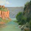 Rio Grande Canyon by Roxanne Rodwell