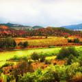 Rio Grande New Mexico by Toula Mavridou-Messer