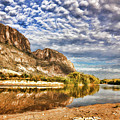 Rio Grande River Oil Painting by Judy Vincent
