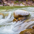 Rio Grande Rocky Flow by SR Green