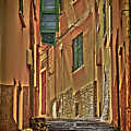 Riomaggiore Alley by Gigi Ebert