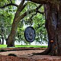 Rip Van Winkle Gardens I  by Chuck Kuhn