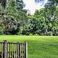 Rip Van Winkle Gardens Louisiana  by Chuck Kuhn