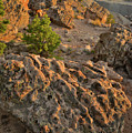 Ripple Boulders At Sunset In Bentonite Quarry by Ray Mathis