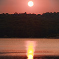 Ripples Of Sunset by Daphne Sampson