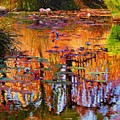 Ripples On Fall Pond by John Lautermilch