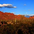 Rising Moon In Arizona by Susanne Van Hulst