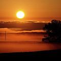Rising Sun Lighting Ground Fog by Mark Duffy