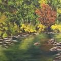 River At Hidden Acres 1. by Kathy Spadaro